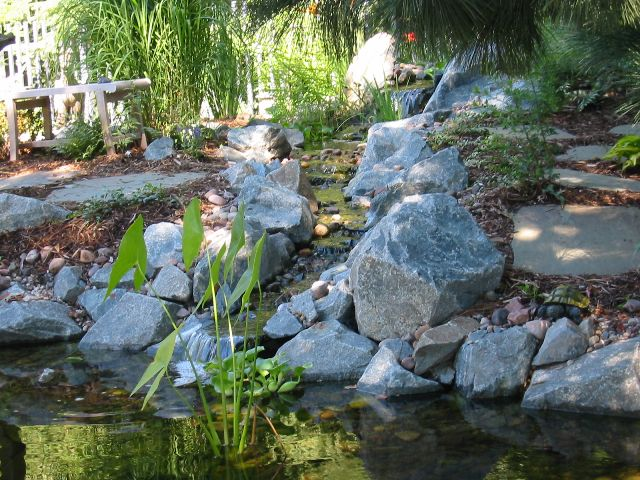 Pond. Water Feature Shawano